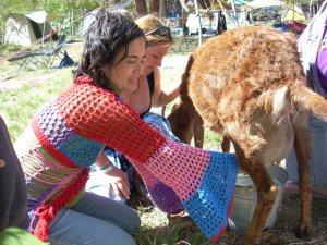Anna-Liza milking Annie