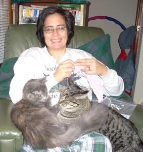 knitting with kitties